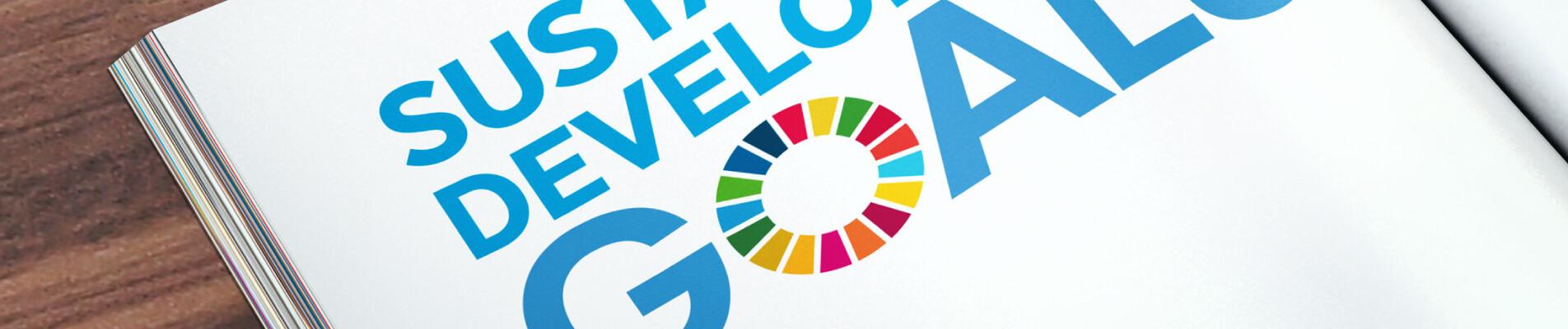 Sustainable Development Goals: tutto sugli SDGs