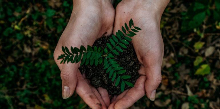 Criteri ESG e sostenibilità aziendale: fattori d'interesse per gli stakeholder