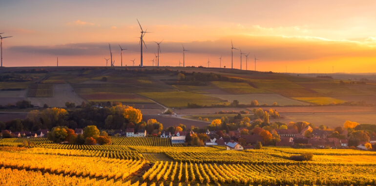 Agroecologia e certificazioni ambientali: preserviamo il futuro dell'Europa