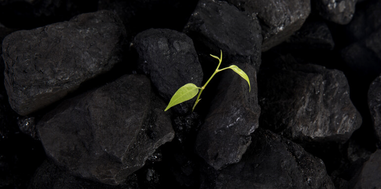 Carbon footprint: cos'è e perché è importante misurarla