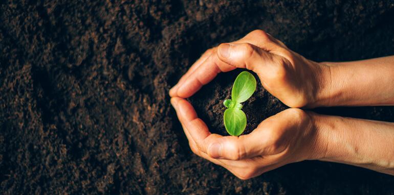 Carbon Footprint: sostenibilità ambientale e riduzione emissioni CO2